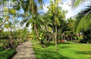 Bán Đất Vườn Đường Long Thuận, Long Phước, Quận 9