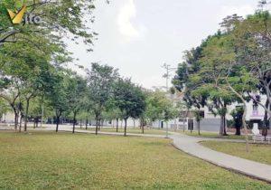 Bán Đất Biệt Thự An Phú Quận 2, Khu B, DT 10x20m