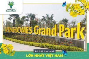 """Hội Hoa Xuân """"Mai Phú Quý"""" Tại Quận 9 Lớn Nhất Việt Nam Năm 2020"""