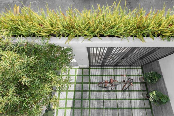 Thiết kế không gian xanh nhà phố