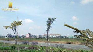 Bán Nền Biệt Thự 290m2 Dự Án KDC Phú Nhuận, Đường Liên Phường